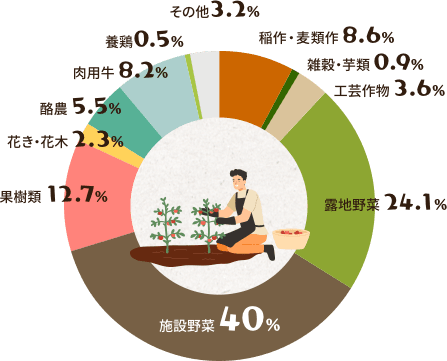 グラフ(経営類型別新規就農者)